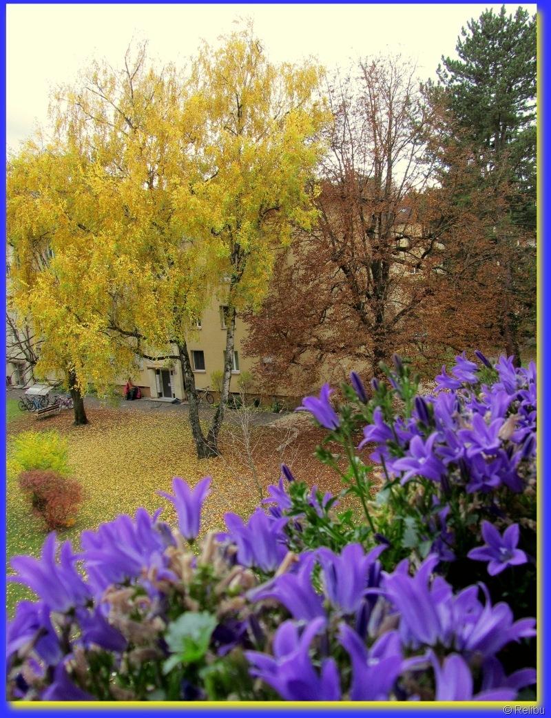 Relibu Der Sommer grüsst den Herbst 11.11.10