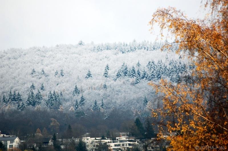 Wintermärchenwald