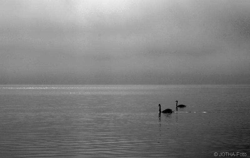Stille am See
