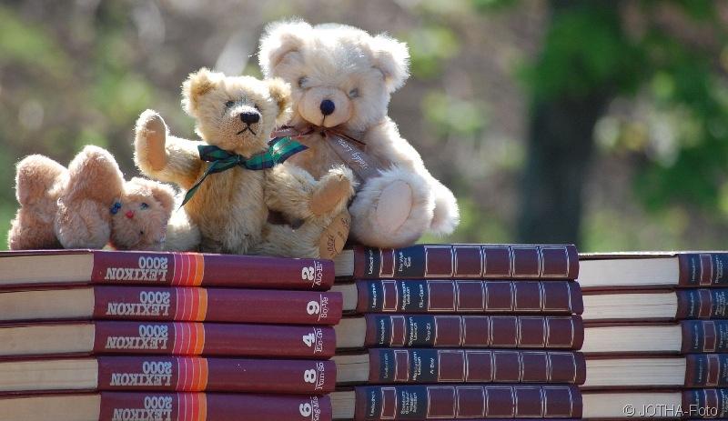 Bücher & Bären